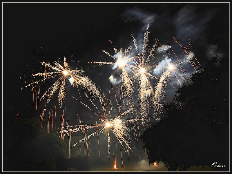 010_Feu_d-artifice.jpg